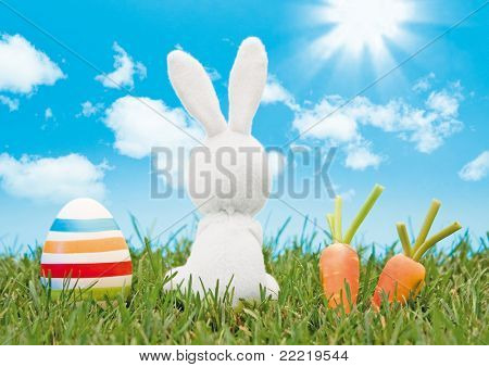 easter-bunny with coloured eggs and carrots looking in the blue sky, sitting in a meadow