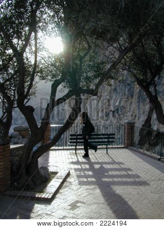 Loner In The Garden Of Augusto