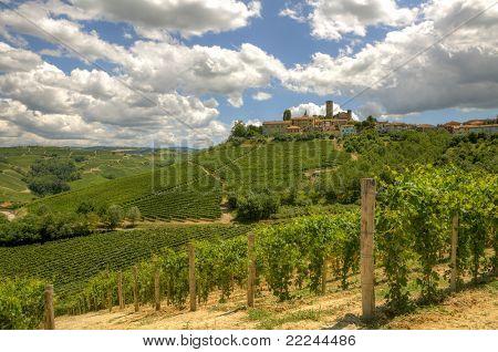 Mira en viñedos y pequeña ciudad en la colina en Piamonte, norte de Italia.