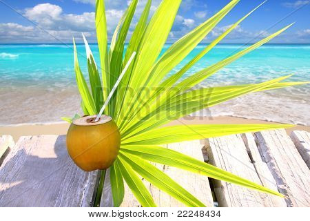 fresh coconut in caribbean sea over wood with chit palm leaf
