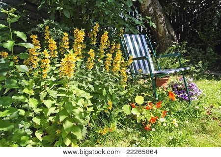 Beautiful, Old Garden With A Deckchair
