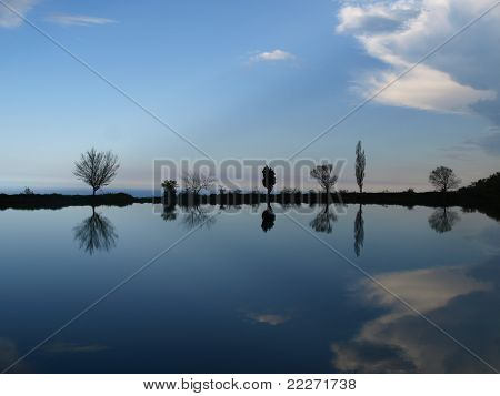 Reflection of trees and clouds in water