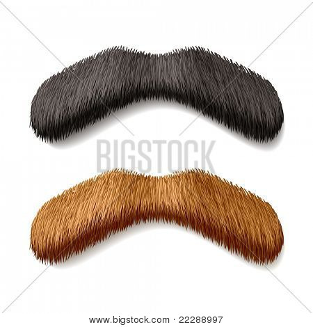 Fake mustaches. Vector.