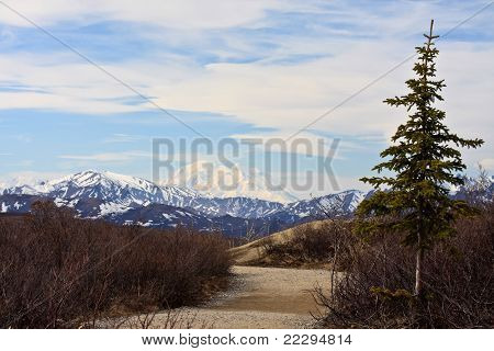 Path To Denali