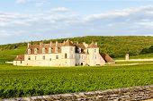 picture of clos  - Clos Blanc De Vougeot Castle - JPG