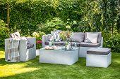Garden furniture in beautiful, summer garden. poster