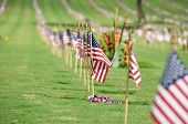 foto of punchbowl  - A row of flags on Memorial Day at the  Punchbowl National Cemetery on the Island of Oahu in Hawaii - JPG
