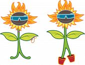 Sunny Rocker Punk Sunflower (Vector) poster