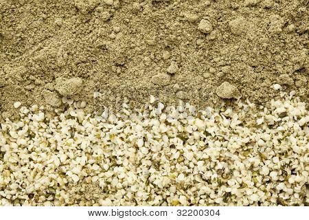 texture of shelled hemp seeds and protein powder