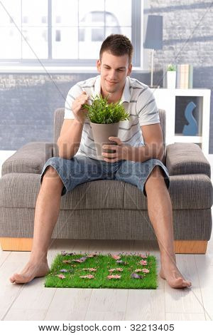 Young man sitting at home in armchair, holding plant in hand, having artificial grass, longing for nature, smiling.