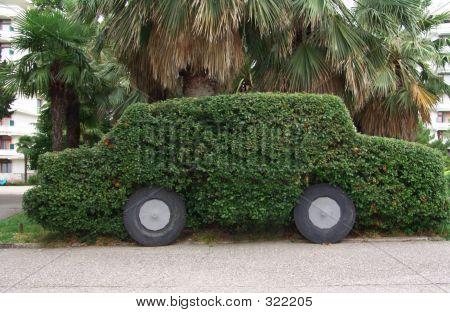 Leaf Car
