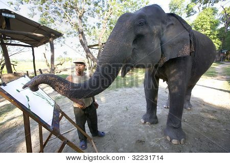Elephant Painting in Nepal