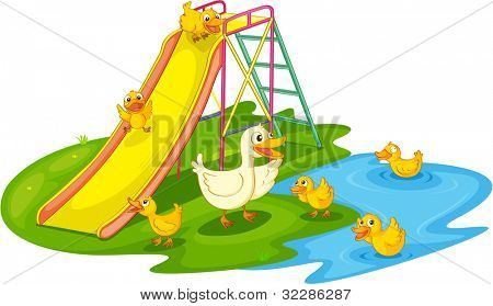 IIllustration of a family of ducks at the park - EPS VECTOR format also available in my portfolio.