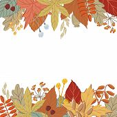 Top And Bottom Border Of Fall, Autumn Leaves, Twigs And Branches, Banner Or Print Design, Vector Ill poster