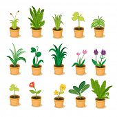 stock photo of flytrap  - series of isolated plant in pot illustrations  - JPG