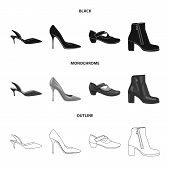 Vector Design Of Footwear And Woman Logo. Set Of Footwear And Foot Vector Icon For Stock. poster