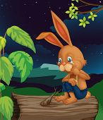 image of hollow log  - Illustration of crying rabbit on log  - JPG