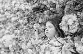 Get Rid Of Seasonal Allergy. Girl Enjoying Floral Aroma. Kid On Pink Flowers Sakura Tree Background. poster