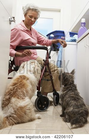 Full length of an African American woman with pet dogs in bathroom while washing clothes