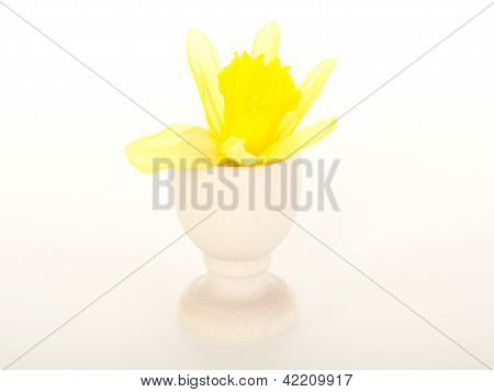 Blossom Of A Narcissus Pseudonarcissus In An Egg Cup