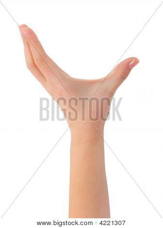 Empty Woman Hand