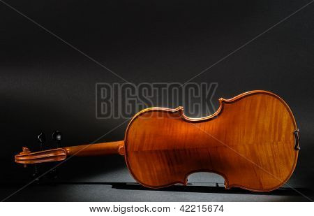 Violin Rear View