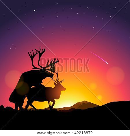 Silhouette of deers copulate