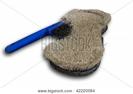 Currycomb And Horseshoe Scratcher
