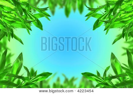 Fresh Green Bamboo Leaves Border
