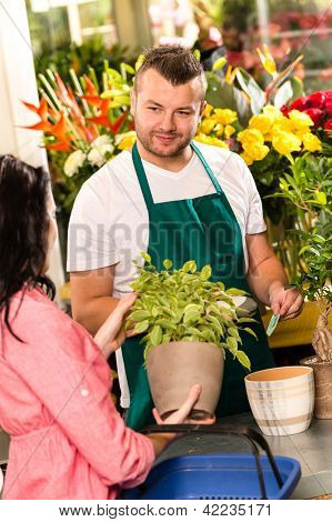 Smiling male florist selling potted plant flower shop market woman