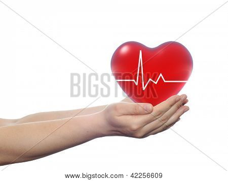 Concept or conceptual 3D red human heart sign or symbol with pulse held in human man or woman hands isolated on white background