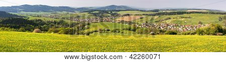 spring time and meadow with common dandelion (taraxacum) - Carpathian mountains - Horni Lidec villag