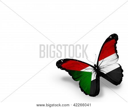 Sudanese Flag Butterfly, Isolated On White Background