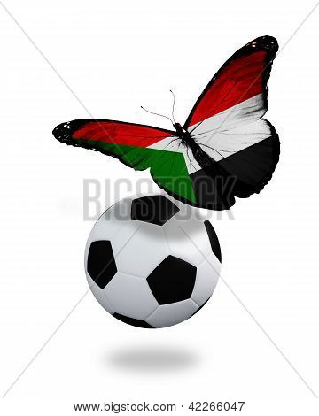 Concept - Butterfly With Sudanese Flag Flying Near The Ball, Like Football Team Playing