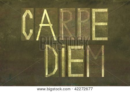 "Earthy background and design element depicting the words ""carpe diem"""