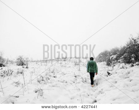 Walk In Winter