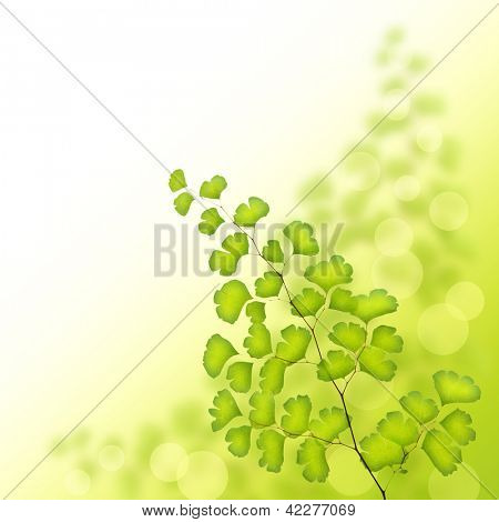 Image of green tree branch border, fresh leaves on white background, tropical greenery, floral backdrop with text space, spring season, foliage illustration, springtime nature