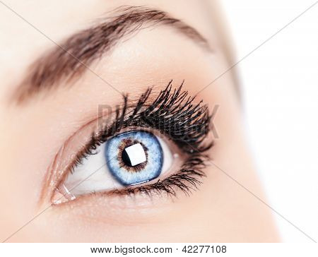 Image of one beautiful female blue eye, women's face part isolated on white background, ophthalmology clinic, health care, black mascara on eyelashes, sight treatment, healthy lifestyle concept