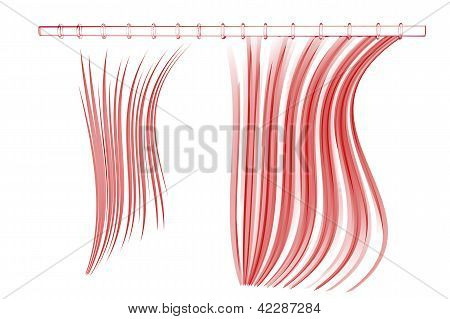 Shower curtain (3D xray red transparent on white)