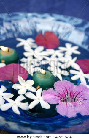 Jasmine, And Pink Asarina, Candles And Blue Water