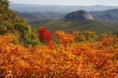 picture of blue ridge mountains  - Looking Glass Rock on the Blue Ridge Parkway in NC Log Hollow Overlook - JPG