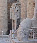 stock photo of ramses  - Standing Statue Of Ramses II  In Luxor Temple - JPG