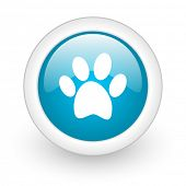 stock photo of animal footprint  - animal footprint blue circle glossy web icon on white background - JPG