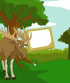 foto of shroom  - Vector image of wood background with plate and elk - JPG