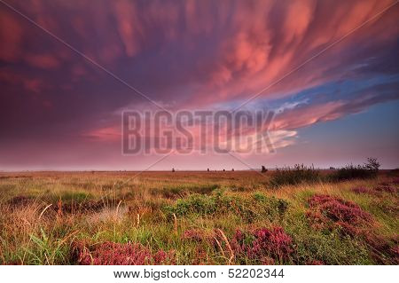 Mammut Clouds Over Swamp During Dramatic Sunset