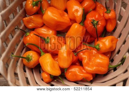 Habanero peppers in ceramic basket