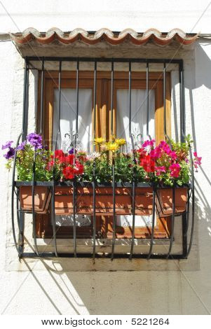 Typical Window Balcony With Flowers In Lisbon
