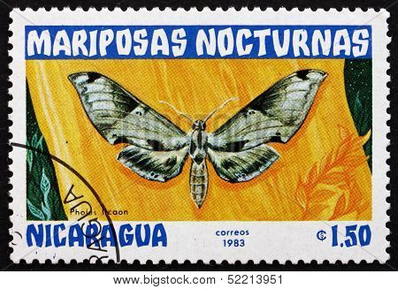 Postage Stamp Nicaragua 1983 Pholus Licaon, Nocturnal Moth