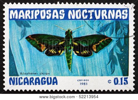 Postage Stamp Nicaragua 1983 Xilophanes Chiron, Nocturnal Moth