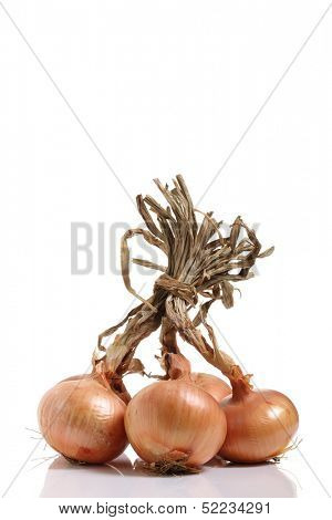bunch of organic onions isolated on white